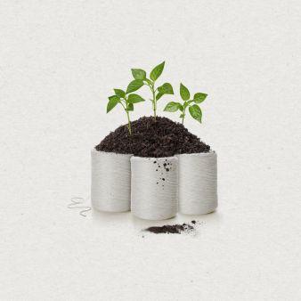 Botanische-Loesung-fuer-die.jpg