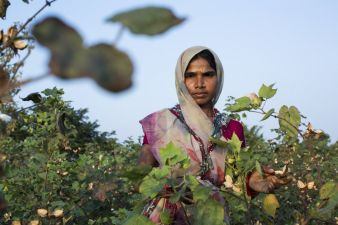 Fairtrade-Baumwollpflueckerin.jpg