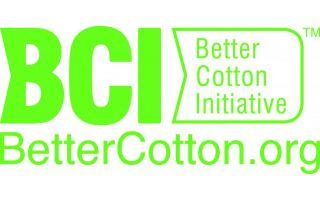 BCI-Green.jpg