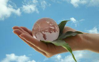 Nachhaltigkeit.jpg