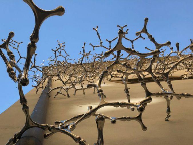 Waterbones.jpg