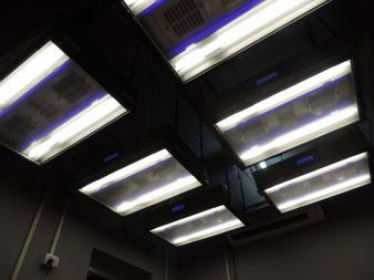 Malti Rugs installierte ein X-Rite Raum mit Spectrallicht QC Photos: Malti Rugs