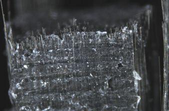 Bruchbild: Prüfkörper aus Fasern, präpariert nach ITCF-Methode. Bildbreite = 1,9 mm