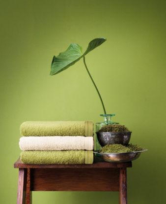 Vegane-Textilien-TI.jpg