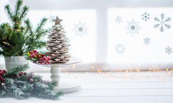 Weihnachten-Tannenbaum.jpeg