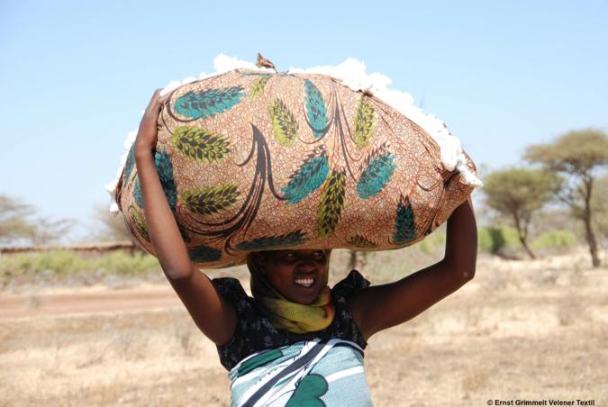 Baumwollpflücke Tanzania