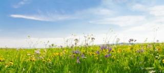 Das Bündnis für nachhaltige Textilien treibt die Branche um Photo: fotolia
