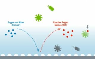Heraeus-antimikrobielles.jpg