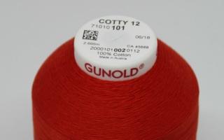 Cone-Gunold.jpg