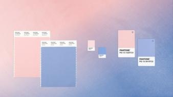 Seit dem Jahr 2000 wählt das Pantone Color Institute die Farbe des Jahres, um den globalen Zeitgeist in Farbe wiederzugeben. Die Farbe des Jahres...