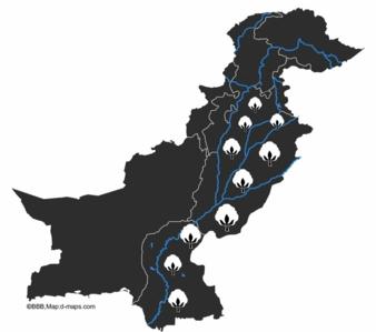 Baumwolle-Pakistan-Flaeche.jpg