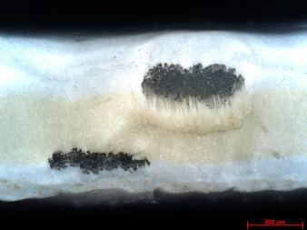 HF-Schweißnaht-Querschnitt , PP-beschichtetes PES-Gewebe, HF-verschweißt mit Hostaphan-Folie in der Fügezone│© ITM